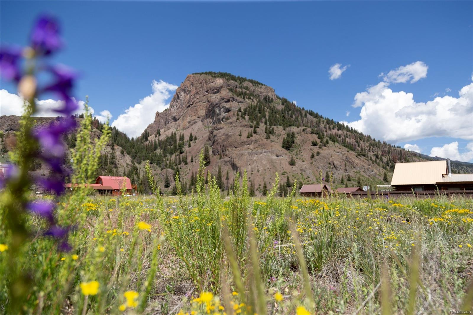 471 W Pine Drive, Creede, CO 81130 - Creede, CO real estate listing