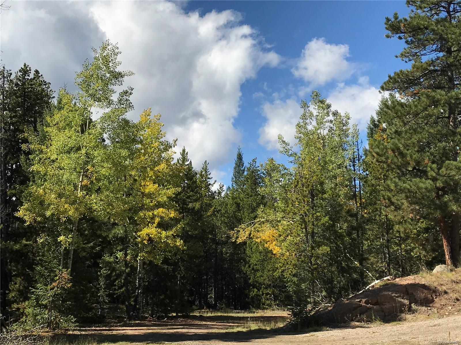 7290-2 Timbertrail Road, Evergreen, CO 80439 - Evergreen, CO real estate listing