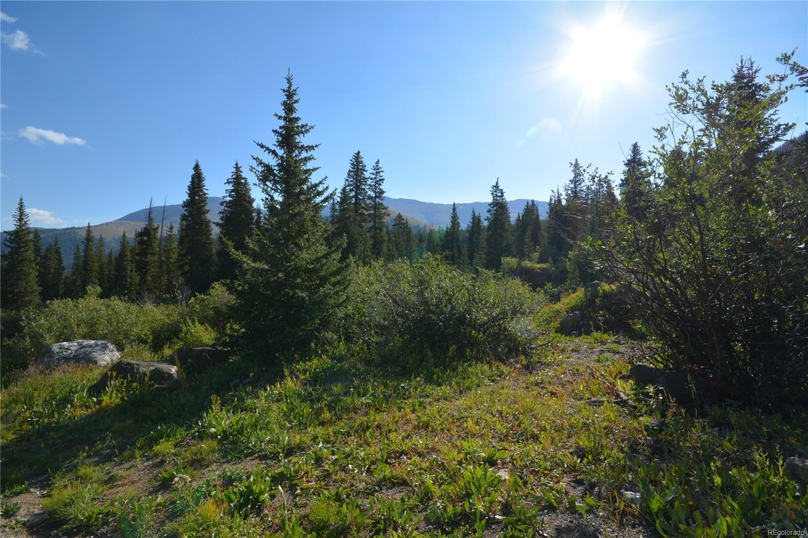 Alpine Breckenridge Real Estate Listings Main Image