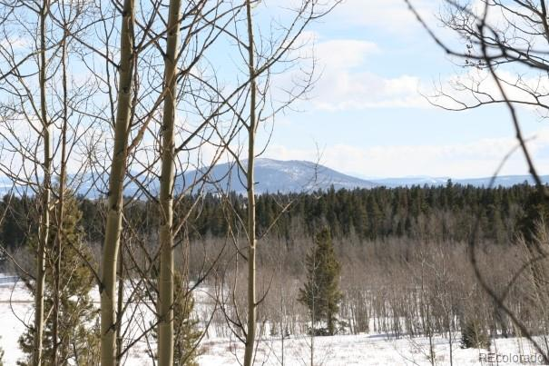 Wheat Way, Fairplay, CO 80440 - Fairplay, CO real estate listing