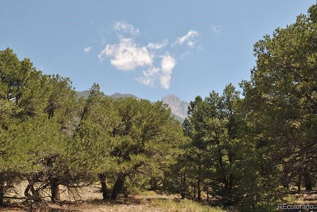 1565 Camino Real, Crestone, CO 81131 - Crestone, CO real estate listing