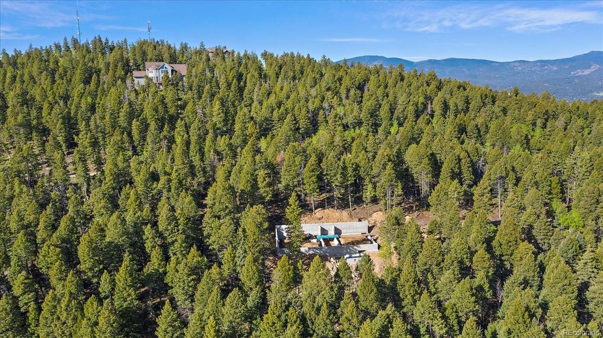 25553 Mountain Moss Court, Evergreen, CO 80439 - Evergreen, CO real estate listing