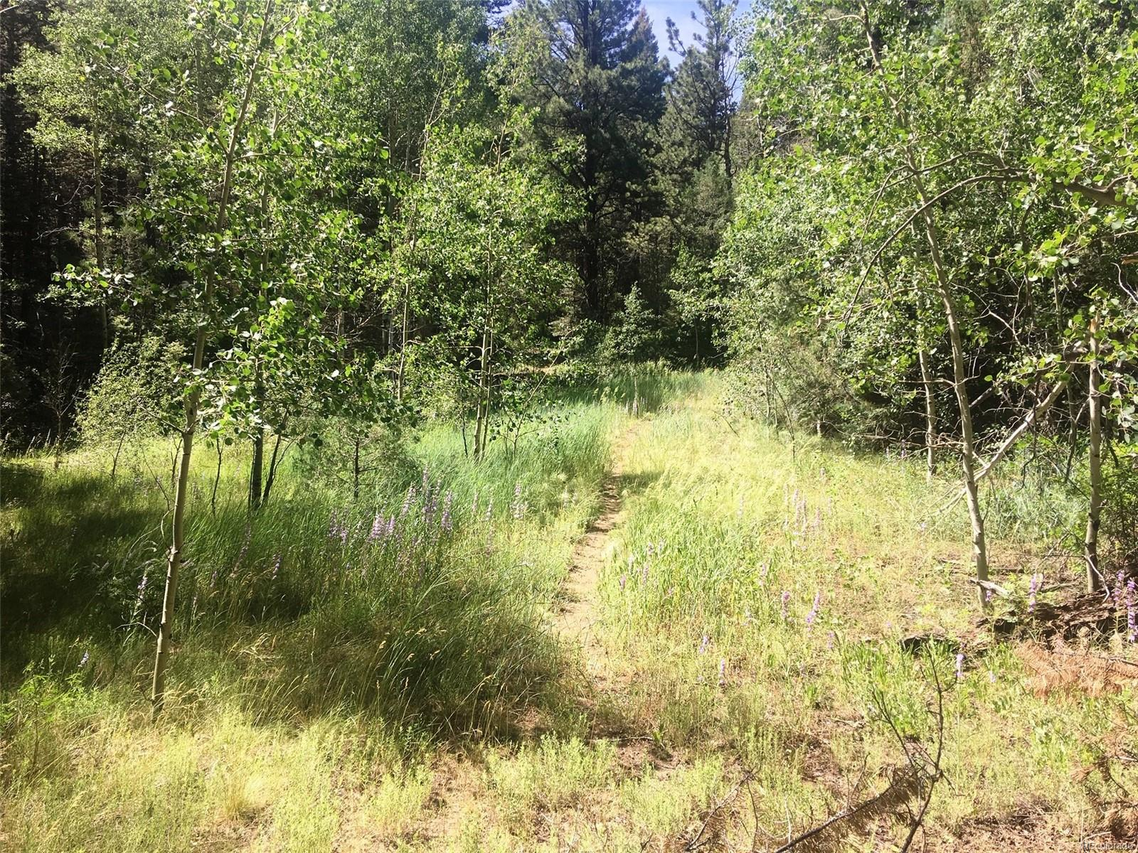 Tract B County Road 4, Howard, CO 81242 - Howard, CO real estate listing