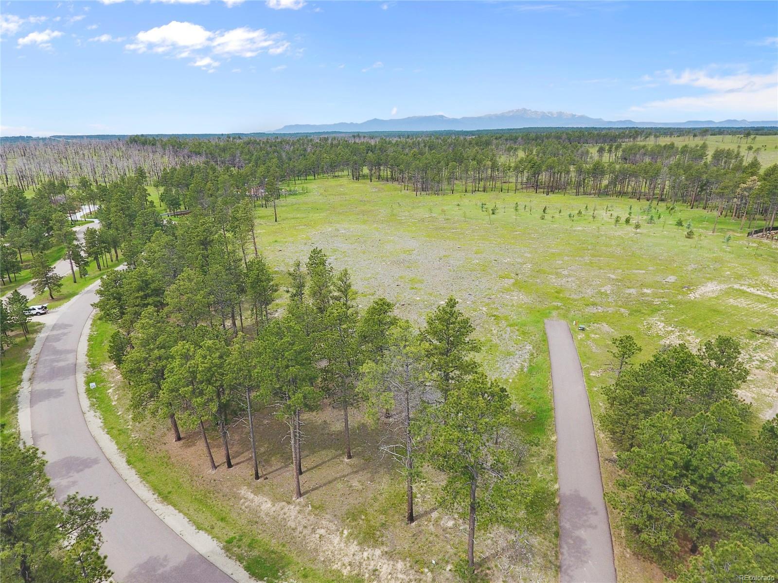 Black Forest Reserve Real Estate Listings Main Image