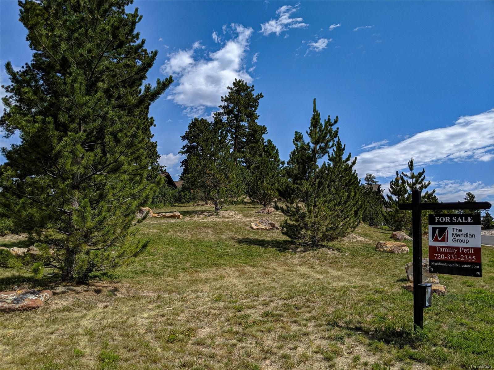 2325 Saddleback Drive, Castle Rock, CO 80104 - Castle Rock, CO real estate listing