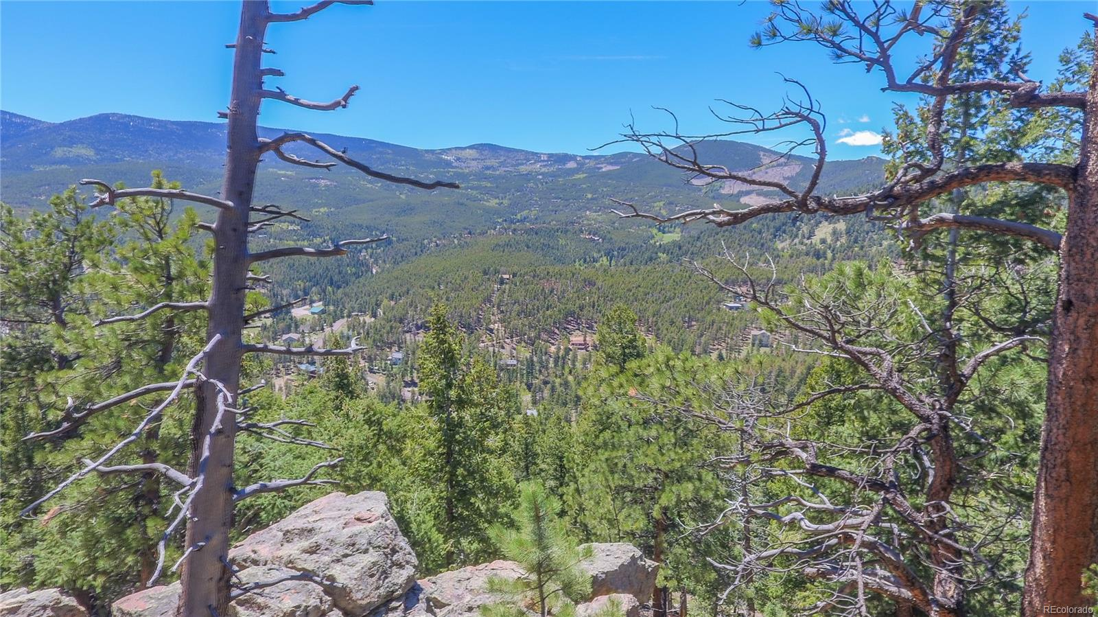 7141 Timbertrail Road, Evergreen, CO 80439 - Evergreen, CO real estate listing
