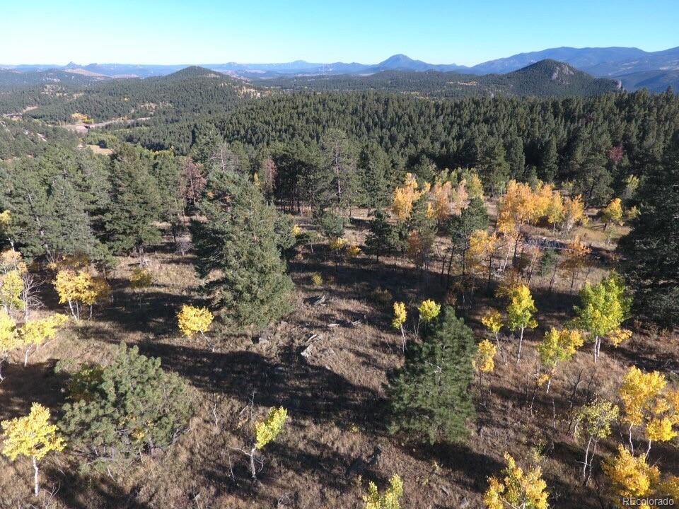 150 Summit Drive, Bailey, CO 80421 - Bailey, CO real estate listing