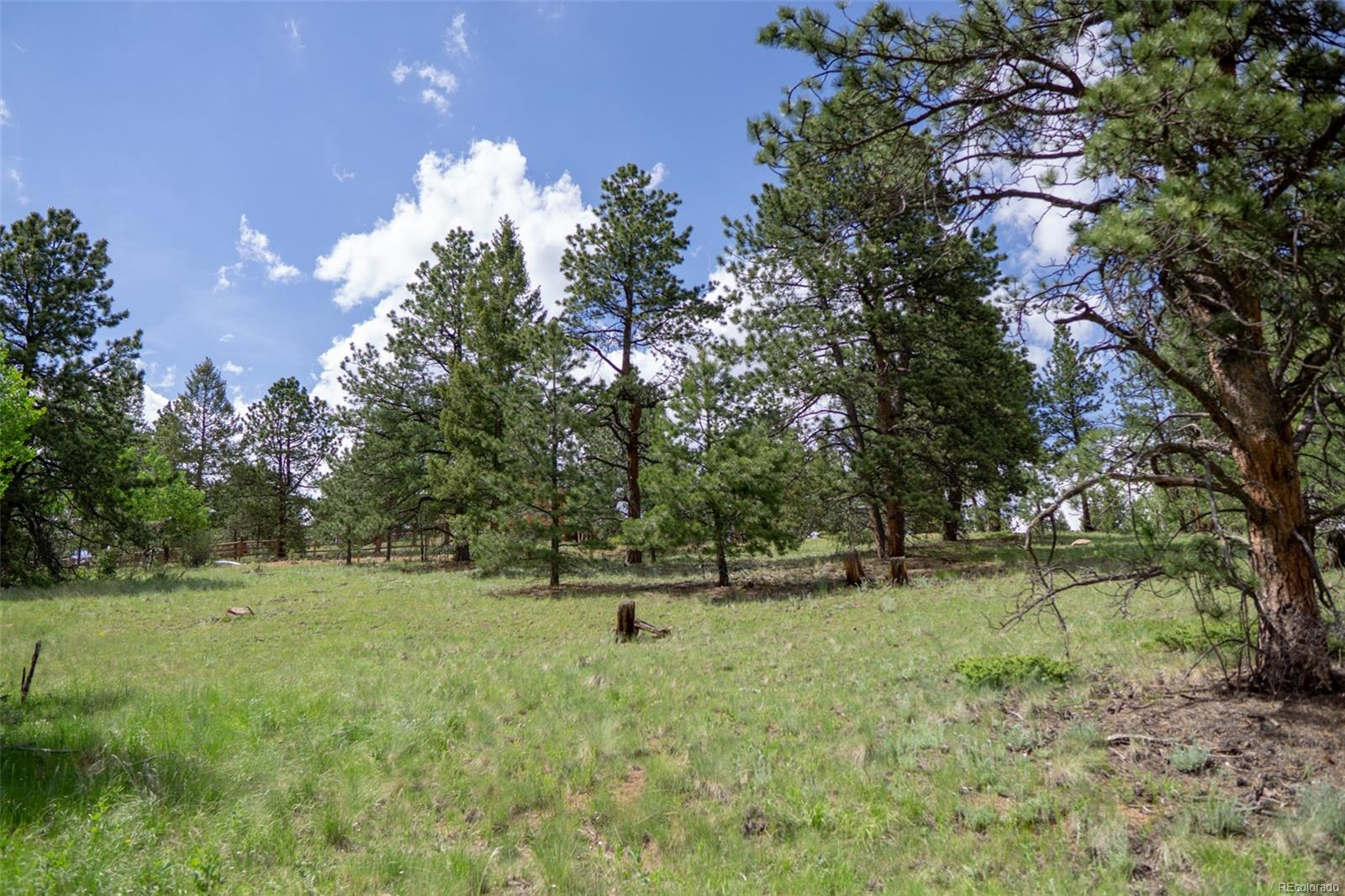 402 Double Tree Road, Bailey, CO 80421 - Bailey, CO real estate listing