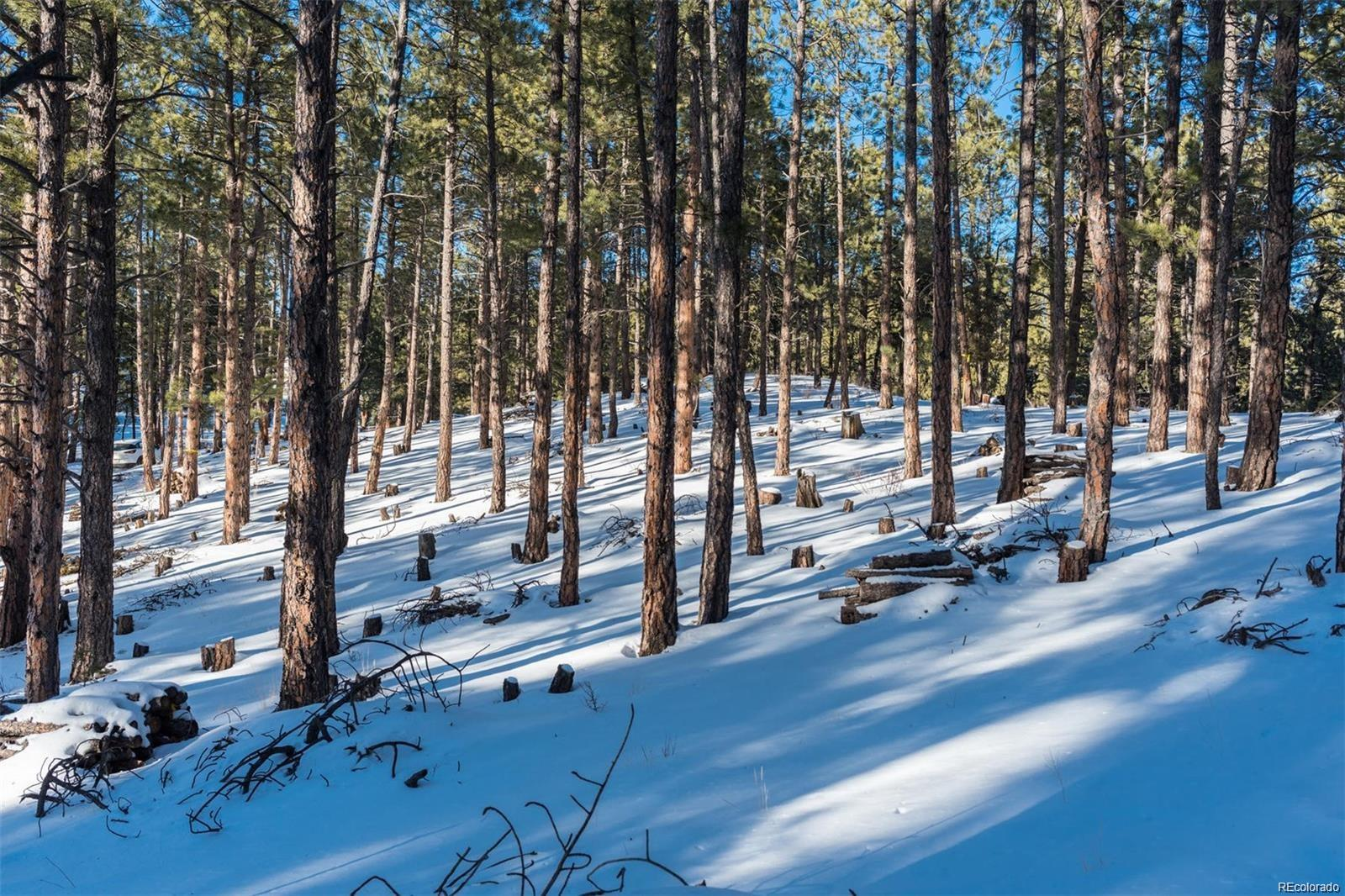 TBD Lot 4 Elk Valley Road, Evergreen, CO 80439 - Evergreen, CO real estate listing