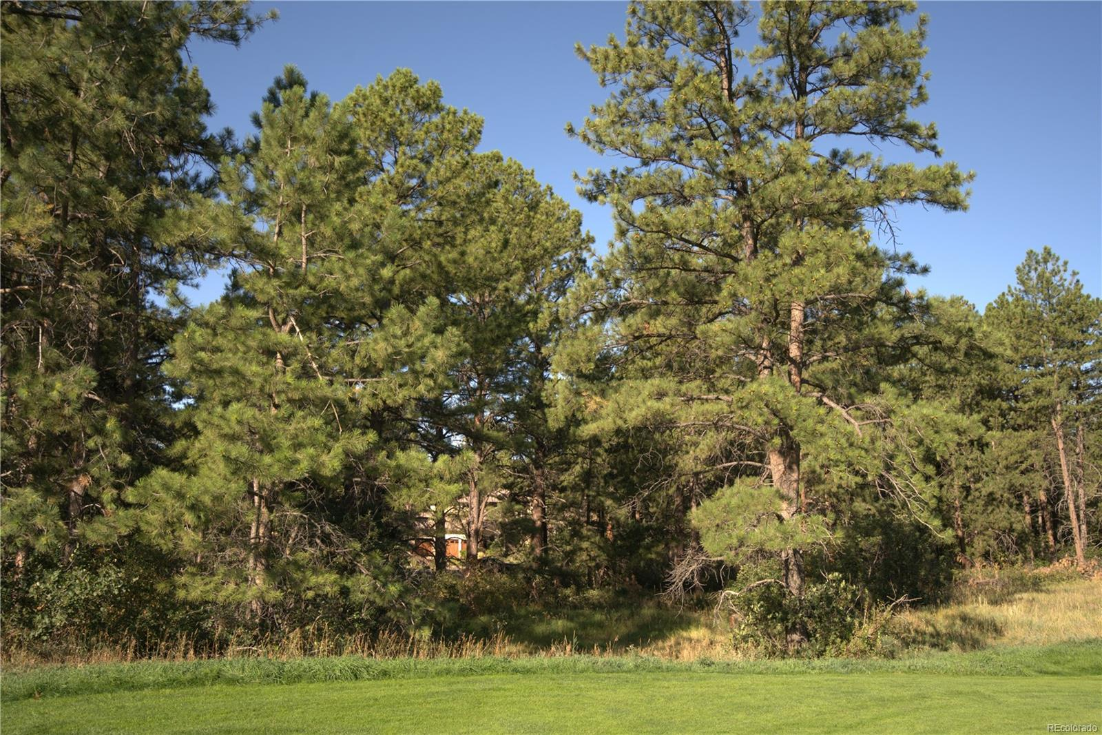 948 Country Club Parkway, Castle Rock, CO 80108 - Castle Rock, CO real estate listing