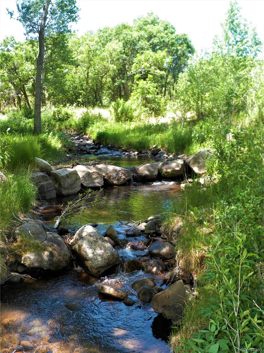1144 Lake Creek Lane, Cotopaxi, CO 81223 - Cotopaxi, CO real estate listing