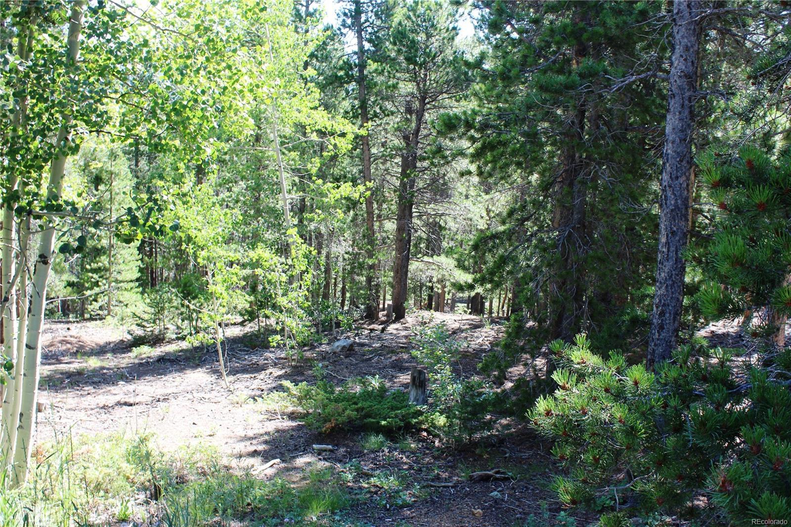 46600 Peak To Peak Highway, Ward, CO 80481 - Ward, CO real estate listing