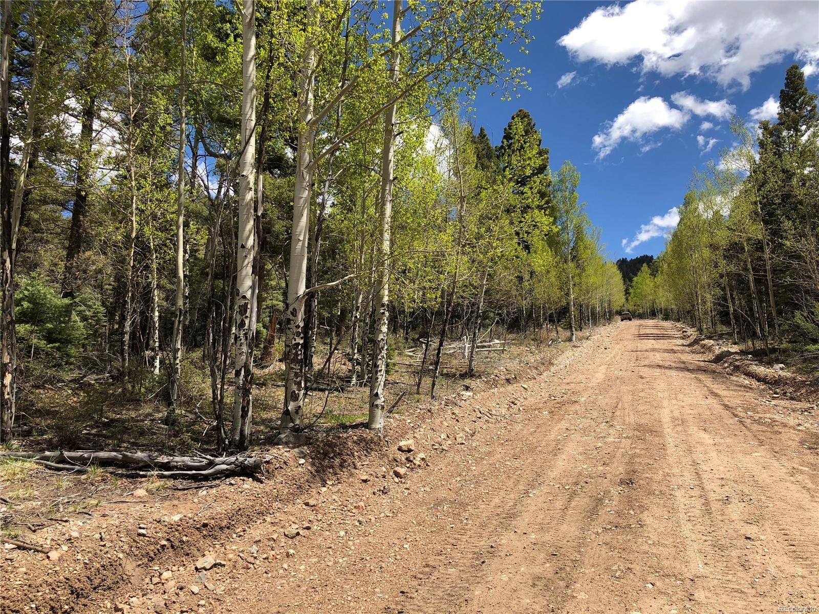 2772 Gonzales Road, Fort Garland, CO 81133 - Fort Garland, CO real estate listing