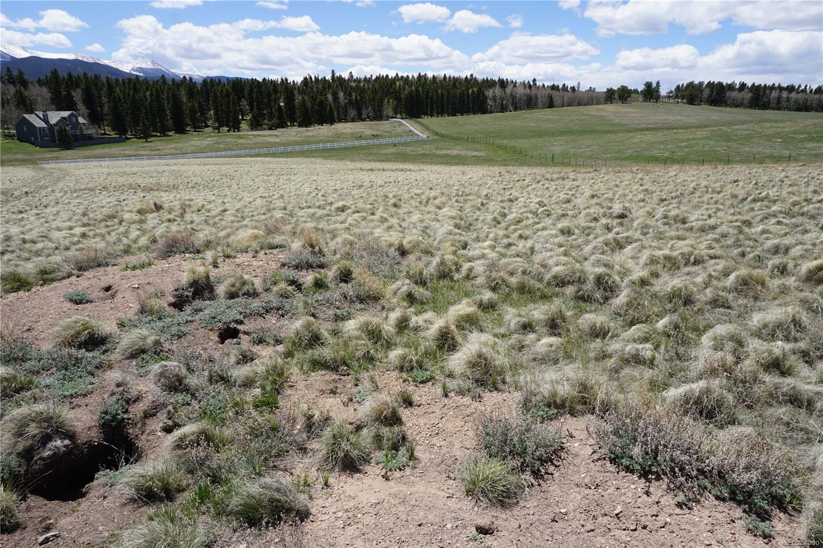 Divide Ranches Real Estate Listings Main Image