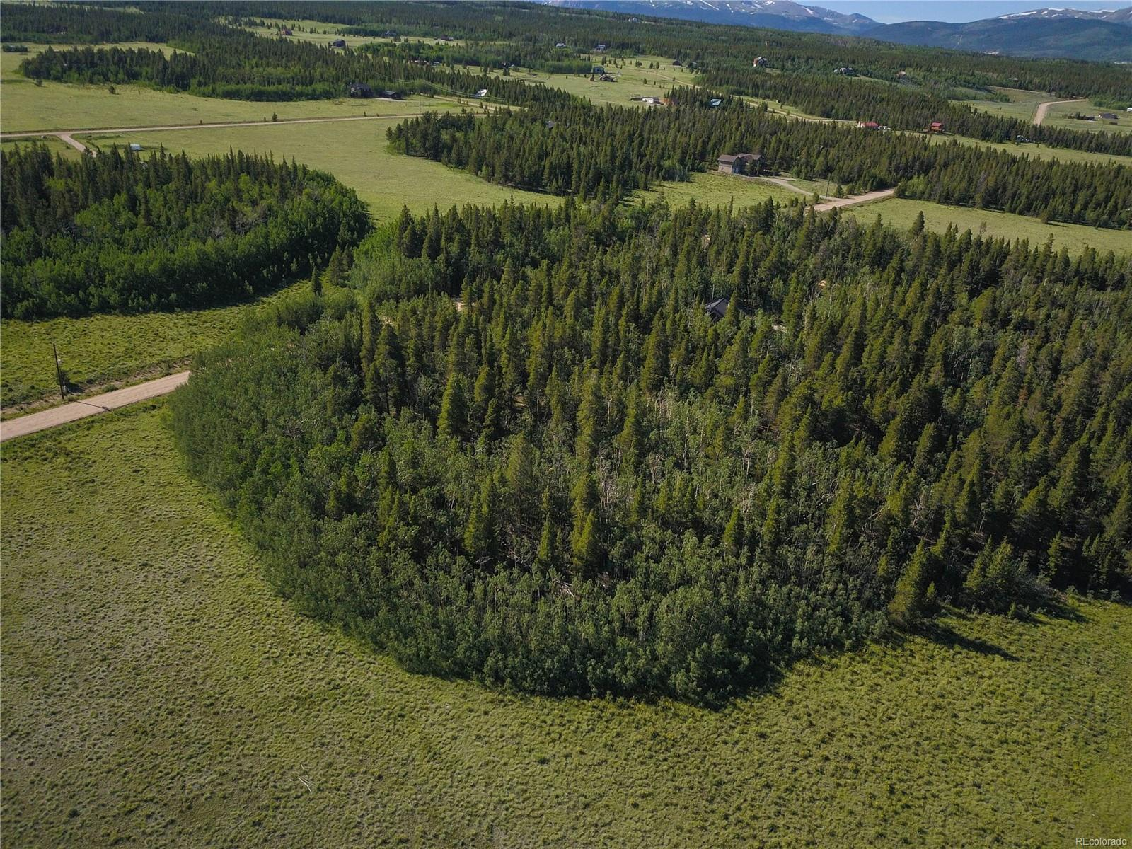 Wild Rye Road, Fairplay, CO 80440 - Fairplay, CO real estate listing