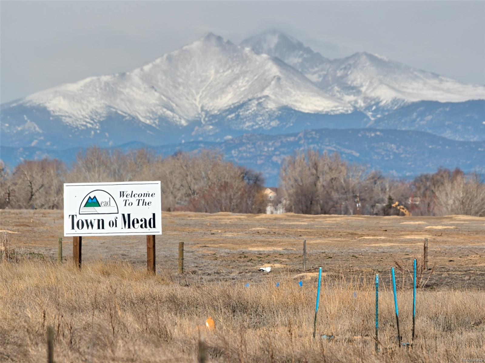 Welker Avenue, Mead, CO 80542 - Mead, CO real estate listing