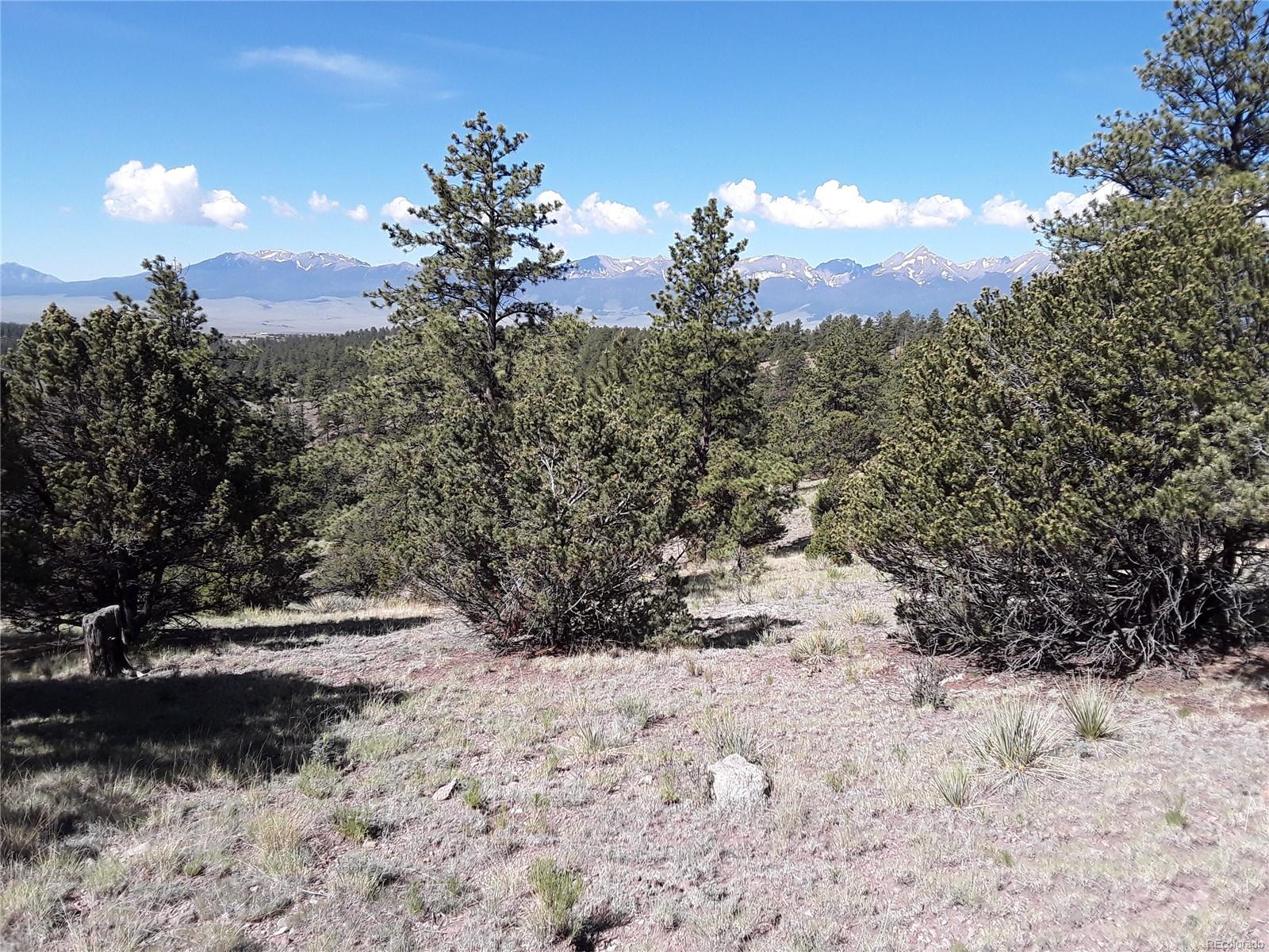 262 CO Rd. 321, Westcliffe, CO 81252 - Westcliffe, CO real estate listing