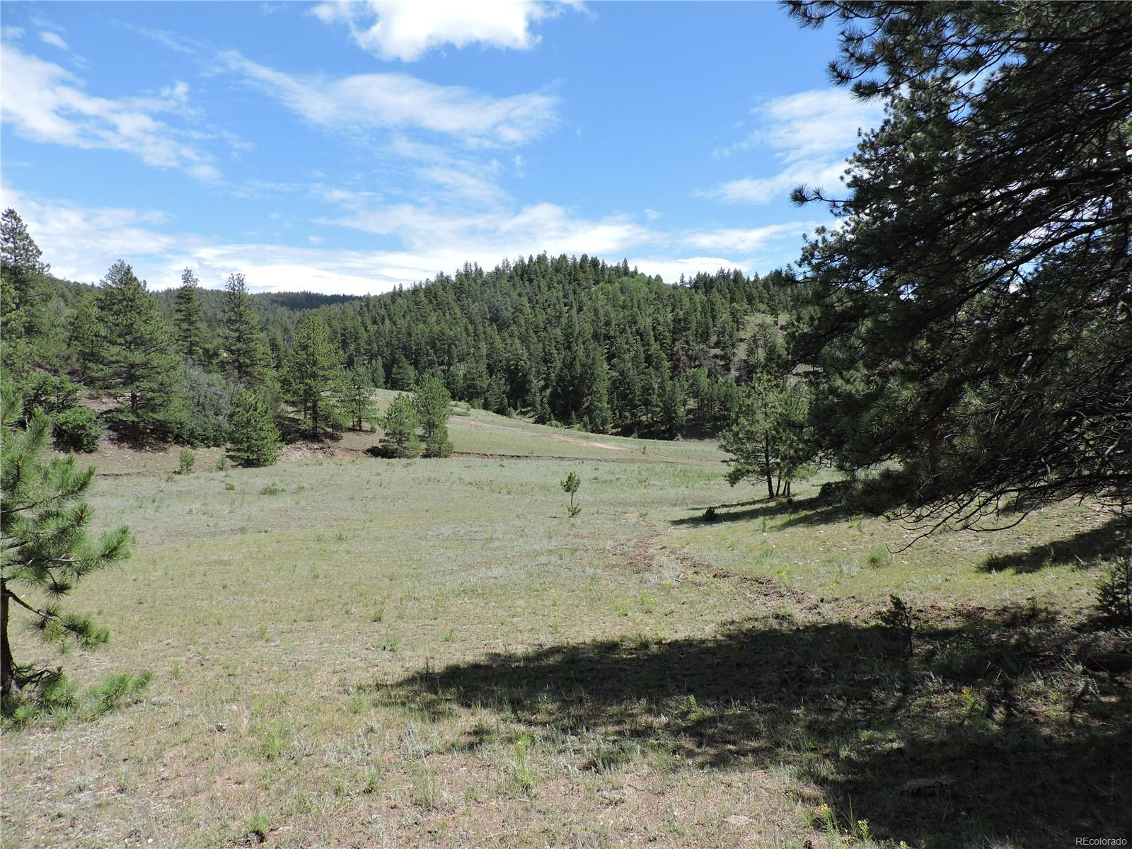 Grandmothers Gulch Road, Canon City, CO 81212 - Canon City, CO real estate listing