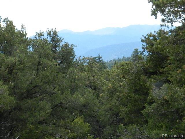 Lot 62 Big Buck Trail, San Luis, CO 81152 - San Luis, CO real estate listing