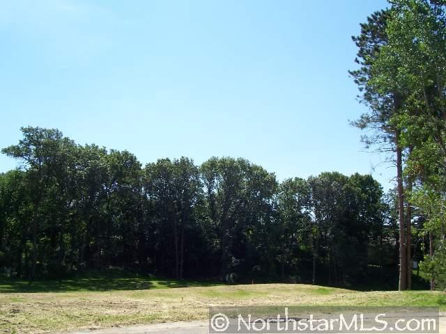 Lot 1, Blk 2 Chickadee Court Property Photo - Red Wing, MN real estate listing