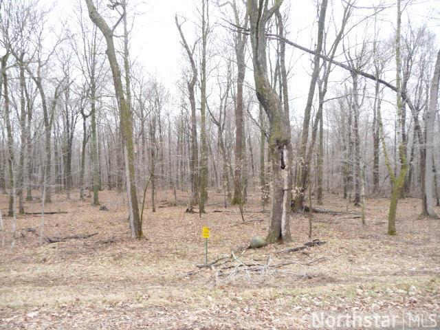 Lot 8 197th Avenue Property Photo - Balsam Lake, WI real estate listing