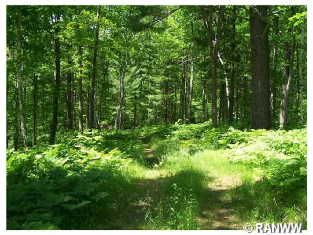 Lot 7 4 5/8 Street Property Photo - Cumberland, WI real estate listing