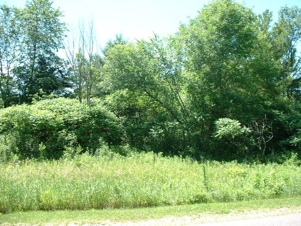 Lot 3 5.01ac Doug Blegen Drive Property Photo - Spring Valley, WI real estate listing