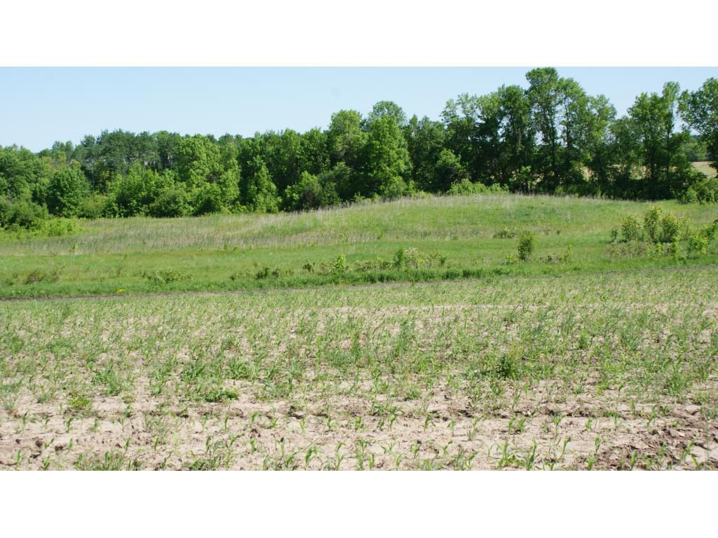 5540 381st Avenue NW Property Photo - Dalbo, MN real estate listing