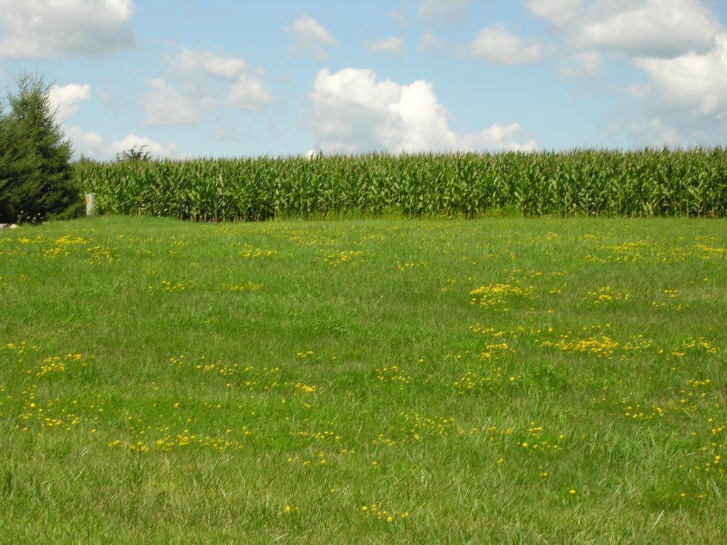 XX Prairie View-Lot 2 Drive Property Photo - Dennison, MN real estate listing