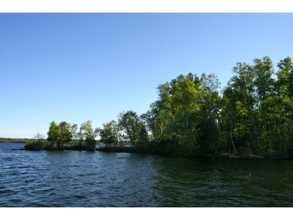 TBD Scrubb Island Property Photo - Cook, MN real estate listing