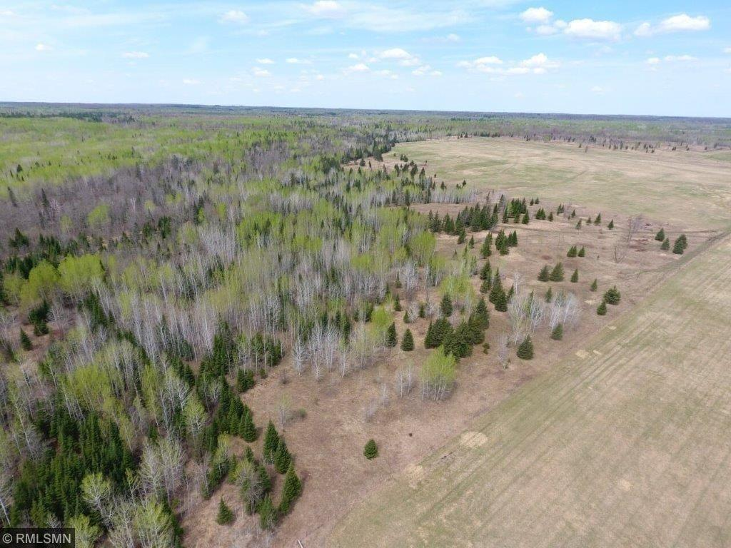 XXX County Rd. 3 PARCEL #3 Property Photo - Wrenshall, MN real estate listing
