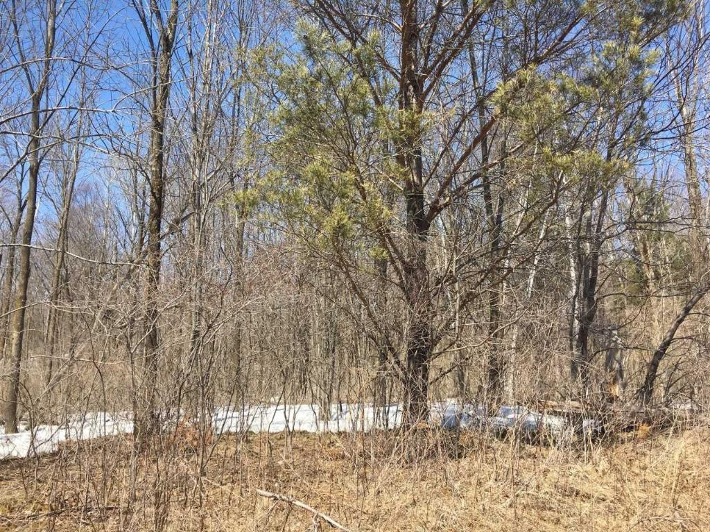0 E NORTH Avenue Property Photo - Luck, WI real estate listing