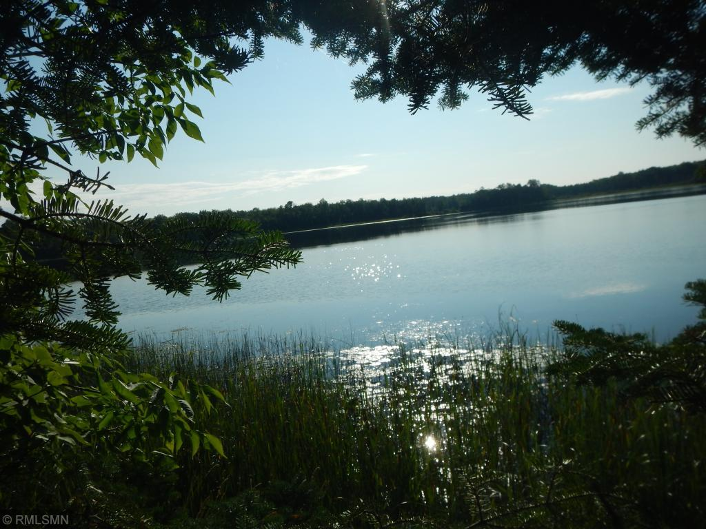 XXX Co. Rd. 155 Property Photo - Deer River, MN real estate listing
