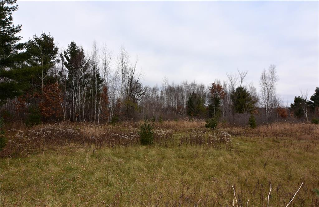 0 10 1/4 Avenue Property Photo - Chetek Twp, WI real estate listing