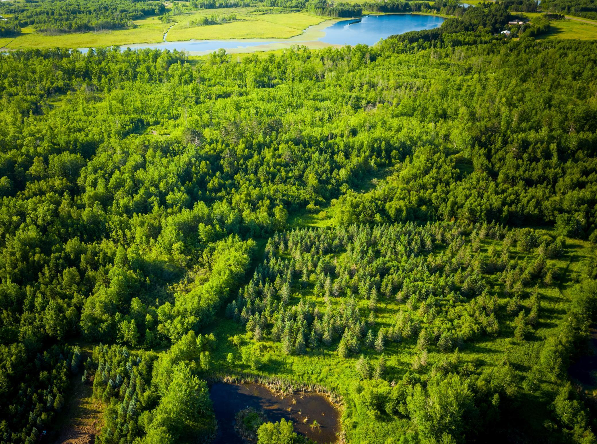 xxx Nelson Road Property Photo - Sandstone, MN real estate listing