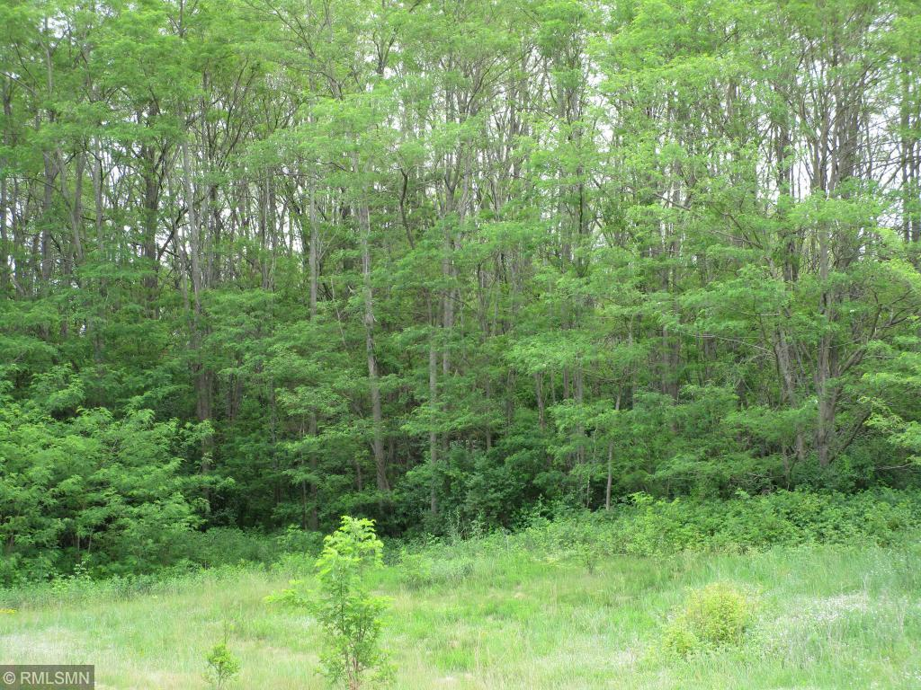 1349 39th Street Property Photo - Houlton, WI real estate listing
