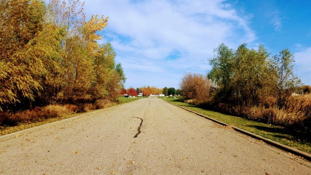 195 Lake Erin Drive Property Photo - Green Isle, MN real estate listing