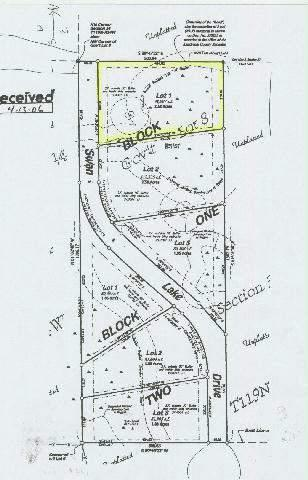 - Lot 3 Blk 1 Swan Lake Dr Property Photo - Kandiyohi, MN real estate listing