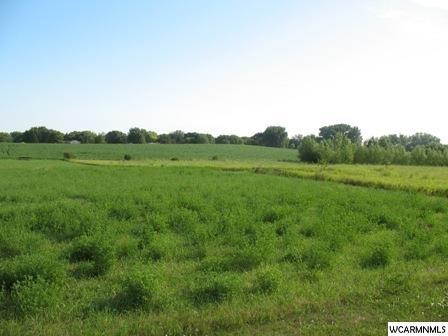 xxx County Road 4 Property Photo - Springfield, MN real estate listing