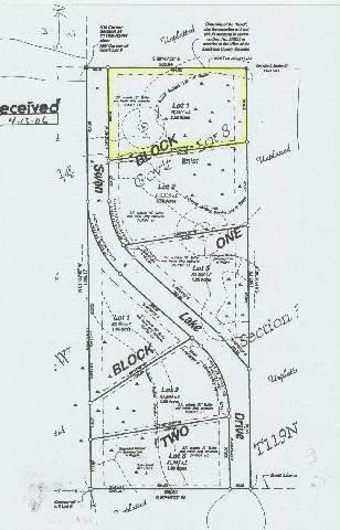 - Lot 1 Blk 1 Swan Lake Dr Property Photo - Kandiyohi, MN real estate listing