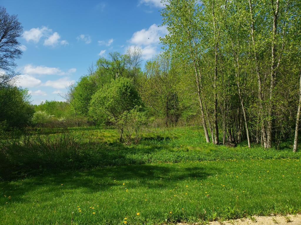 Lot 10 776th Avenue Property Photo - Spring Valley, WI real estate listing