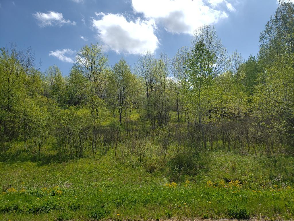 Lot 16 776th Avenue Property Photo - Spring Valley, WI real estate listing