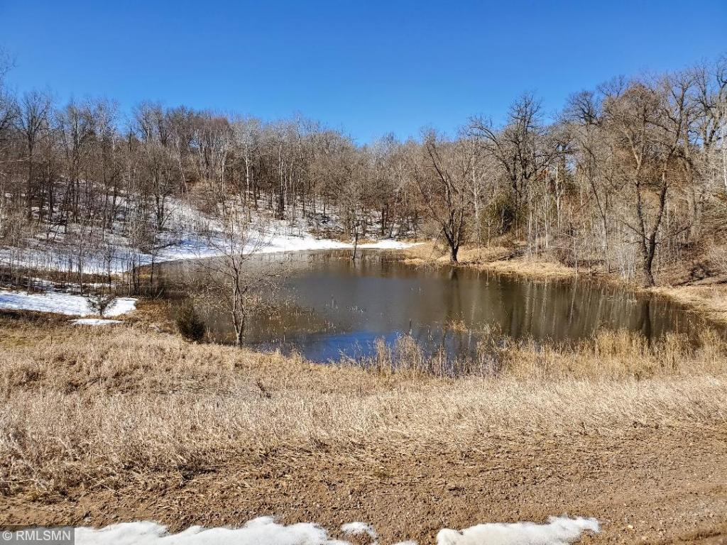 XXX 242nd Street Property Photo - Eureka, WI real estate listing