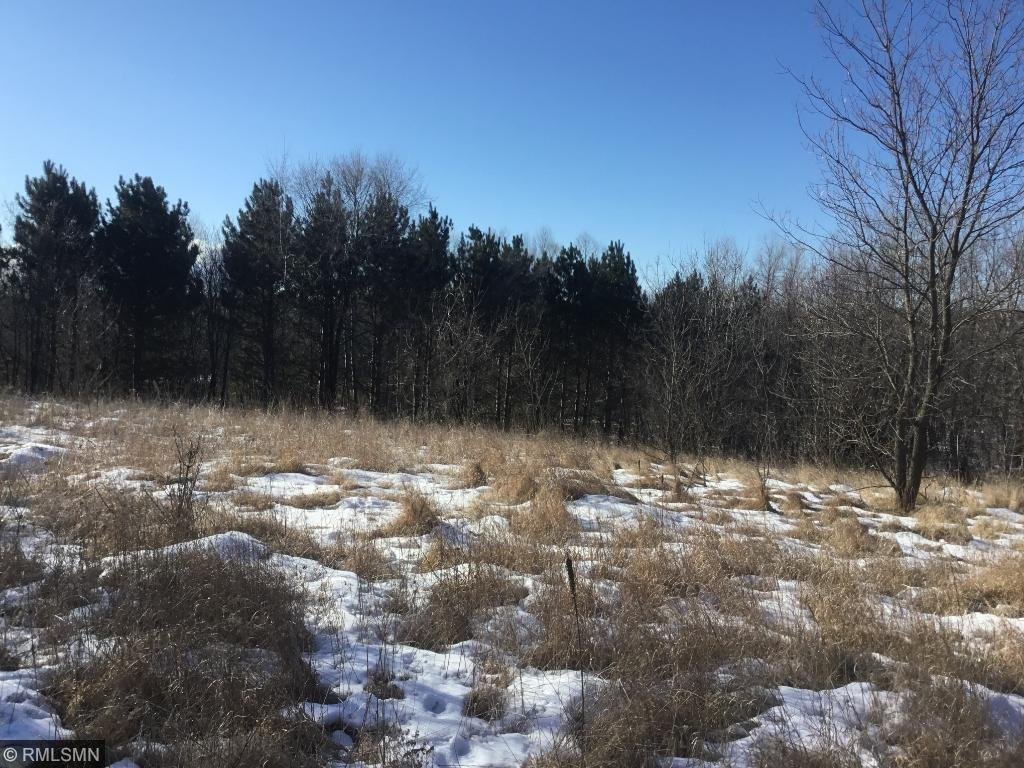xxx 137th Avenue SE Property Photo - Becker Twp, MN real estate listing