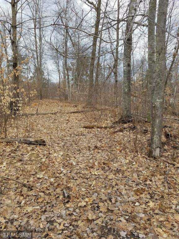 TBD Moose Trail Property Photo - Laporte, MN real estate listing