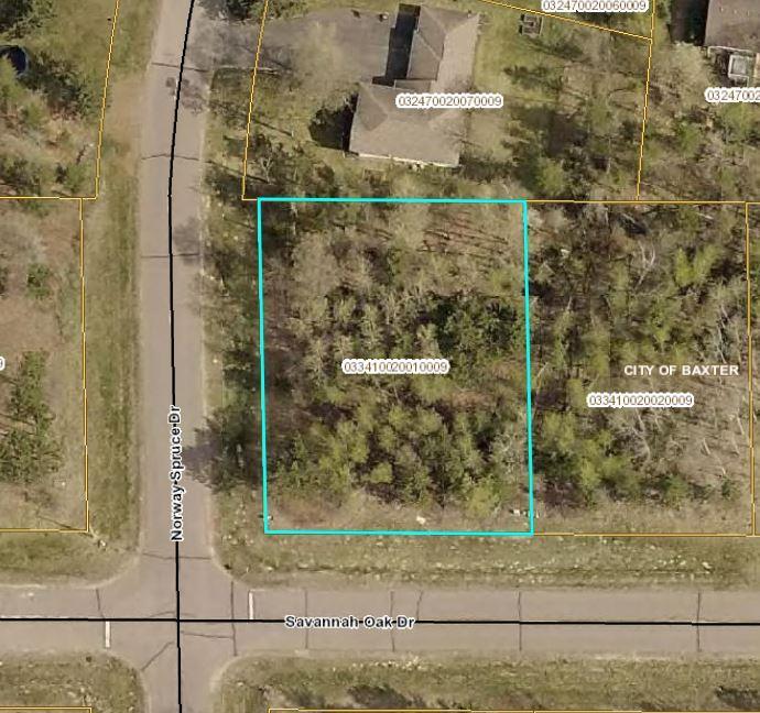 L1 B2 Savannah Oak Drive Property Photo - Baxter, MN real estate listing