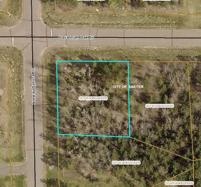 L4 B4 Savannah Oak Drive Property Photo - Baxter, MN real estate listing