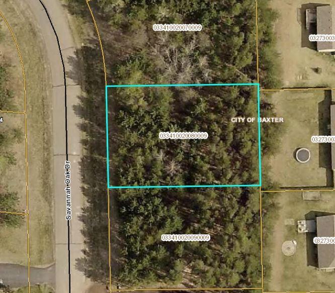 L8 B2 Savannah Oak Drive Property Photo - Baxter, MN real estate listing