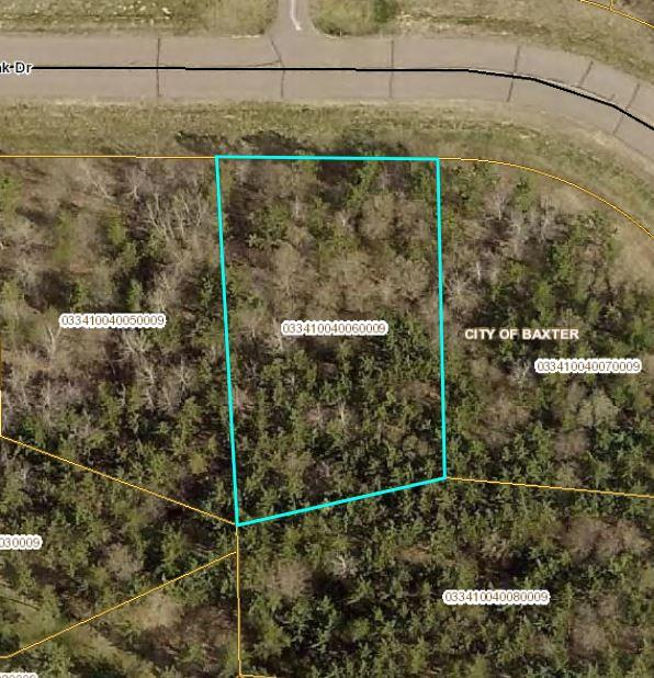 L6 B4 Savannah Oak Drive Property Photo - Baxter, MN real estate listing
