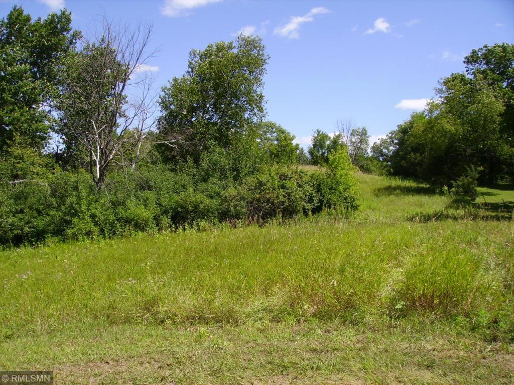 Lot 21 242nd Street Property Photo - Eureka, WI real estate listing